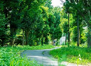 二子坂戸緑道(みどり公園) 約320m(徒歩4分)