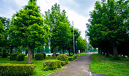 大和田公園 約750m(徒歩10分)