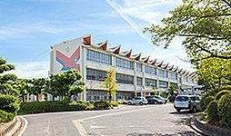 市立横須賀小学校 約650m(徒歩9分)