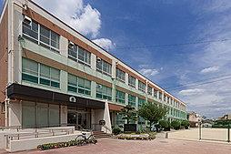 市立金城小学校 約270m(徒歩4分)