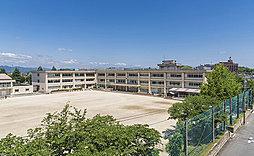 市立 養正小学校 約370m(徒歩5分)