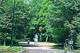 赤塚公園 約700m(徒歩9分)