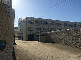 平野中学校(約730m・徒歩10分)