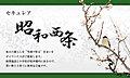 【ダイワハウス】セキュレア昭和西条 (分譲住宅)
