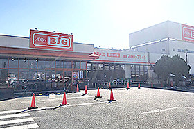ザ・ビッグ甲府和戸店(約1.2km:徒歩15分)