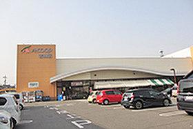 JAあいち豊田 Aコープ若林店 (約1,500m:徒歩19分)