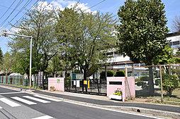 薬円台小学校(...