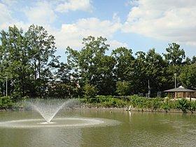 噴水が綺麗な『羽鷹池公園』まで徒歩8分