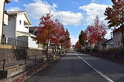 【創建ホーム】広島郊外で暮らしやすい都市、東広島市の大型団地ですのその他