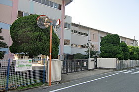 渋谷中学校(徒歩約15分)