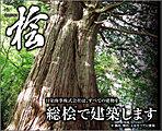 【総桧住宅】すべての建物を総桧で建築します。日栄商事は高知県と「土佐材パートナー企業」を結んでいます。通し柱・管柱・土台すべてに使用。