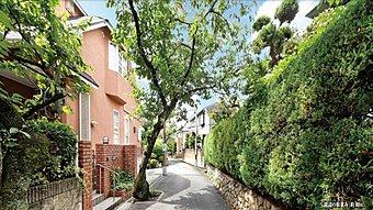 永楽荘3丁目の北摂らしい緑豊かで閑静な街並み。春には、樹齢が古く枝振りのいい見事な桜並木が新しい季節をお知らせしてくれます。