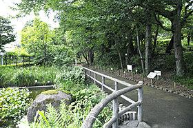 区立赤塚植物園(徒歩4分・約305m)