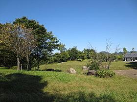 自然豊かな広大な公園、子供にも大人気のゆりのき台公園