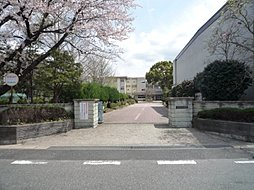 辰巳台東小学校...
