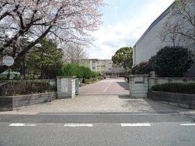辰巳台東小学校 徒歩約3分(約222m)
