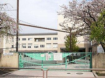 世田谷区立砧南小学校・・距離約810m(徒歩11分)