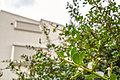 鷹の台駅徒歩5分【南道路】【公園隣接】【LDK17帖超&カフェスタイルキッチン】