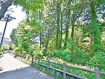 休日は四季を感じながら、ジョギングしたり、お子様と一緒に遊べる善福寺公園。