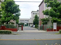 刈谷南中学校 約1430mm