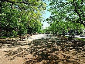 舟山公園まで300m 木陰が心地よい公園。 小さなお子様の滑