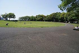 稲城中央公園グラウンドの週末多くの子供で賑わいます。