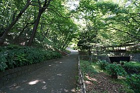 広い園内には自然林に囲まれた散策路もあります♪