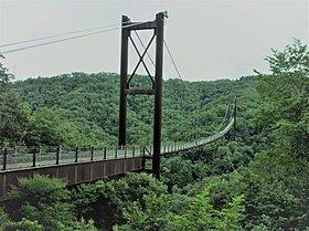 府民の森ほしだ園地の「星のブランコ」国内最大級の人道つり橋