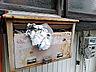 その他,1DK,面積20m2,賃料2.0万円,JR京浜東北・根岸線 洋光台駅 徒歩13分,,神奈川県横浜市磯子区田中2丁目