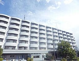 成田湯川駅 3.9万円