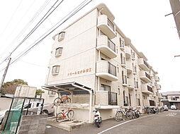 神奈川県座間市東原1丁目の賃貸マンションの外観