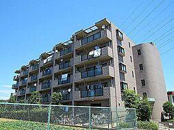 フォンティーヌ津田山[5階]の外観