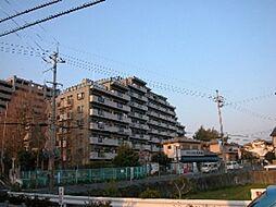 ステイツ枚方・藤阪メタセコイアの丘[6階]の外観