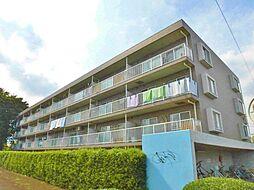 神奈川県綾瀬市蓼川2丁目の賃貸マンションの外観