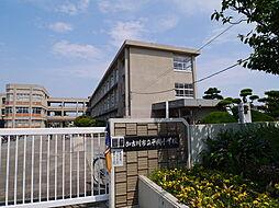 黒田荘[8号室]の外観