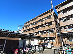 桜街道駅 5.5万円