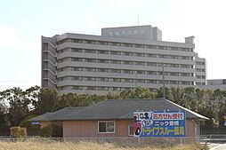 愛知県豊橋市新栄町字南小向の賃貸マンションの外観