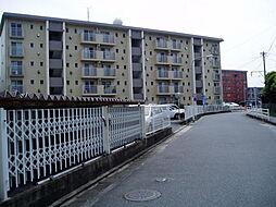 松原ビル[106号室]の外観