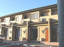 [テラスハウス] 富山県富山市向新庄 の賃貸【富山県 / 富山市】の外観
