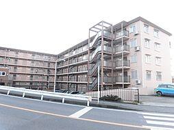 さがみ野駅 5.3万円