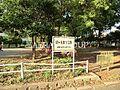 緑ヶ丘第1公園...