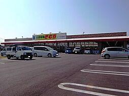 [一戸建] 岡山県倉敷市四十瀬 の賃貸【/】の外観