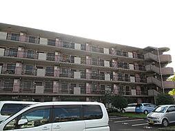 柏桜レジデンス[101号室]の外観