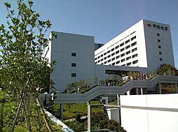 東京都日野市程久保3丁目の賃貸アパートの外観