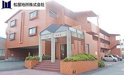愛知県豊橋市東幸町字東明の賃貸マンションの外観