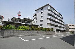 兵庫県加古川市加古川町北在家の賃貸マンションの外観