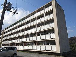 ビレッジハウス広江 1号棟[202号室]の外観