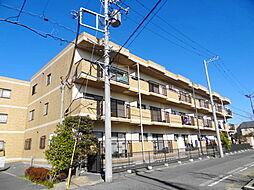 千葉県浦安市弁天1丁目の賃貸マンションの外観