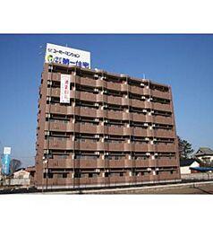 栃木県下野市下古山の賃貸マンションの外観