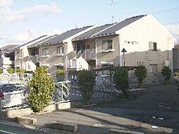 南海高野線 河内長野駅 徒歩12分の賃貸アパート